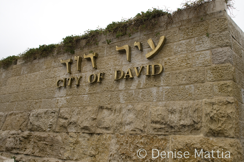 _MG_0516  Israel  City of David